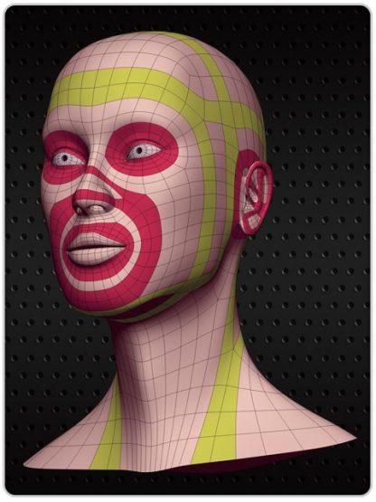 Topologia i modelowanie kobiecej głowy 2