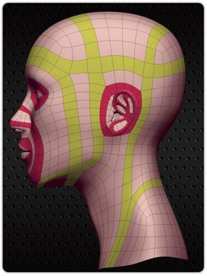 Topologia i modelowanie kobiecej głowy 1