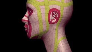 Topologia i modelowanie kobiecej głowy - szkolenie wideo poświęcone modelowaniu organicznemu w programie Blender z zachowaniem poprawnej topologii