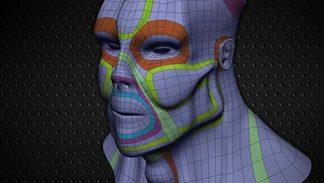 Topologia w modelowaniu organicznym - szkolenie wideo poświęcone poprawnej topologii w modelowaniu