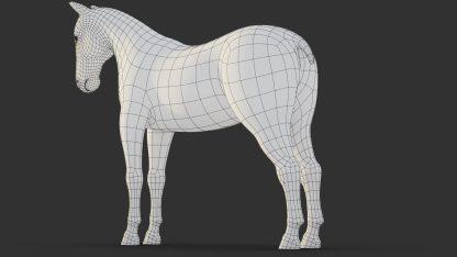 Modelowanie w Blenderze siatka opisująca konia z tyłu
