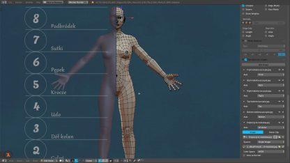 Proces modelowania kobiety w Blenderze - korekta proporcji